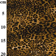 100% Cotton Leopard Animal Print Fabric x 0.5m